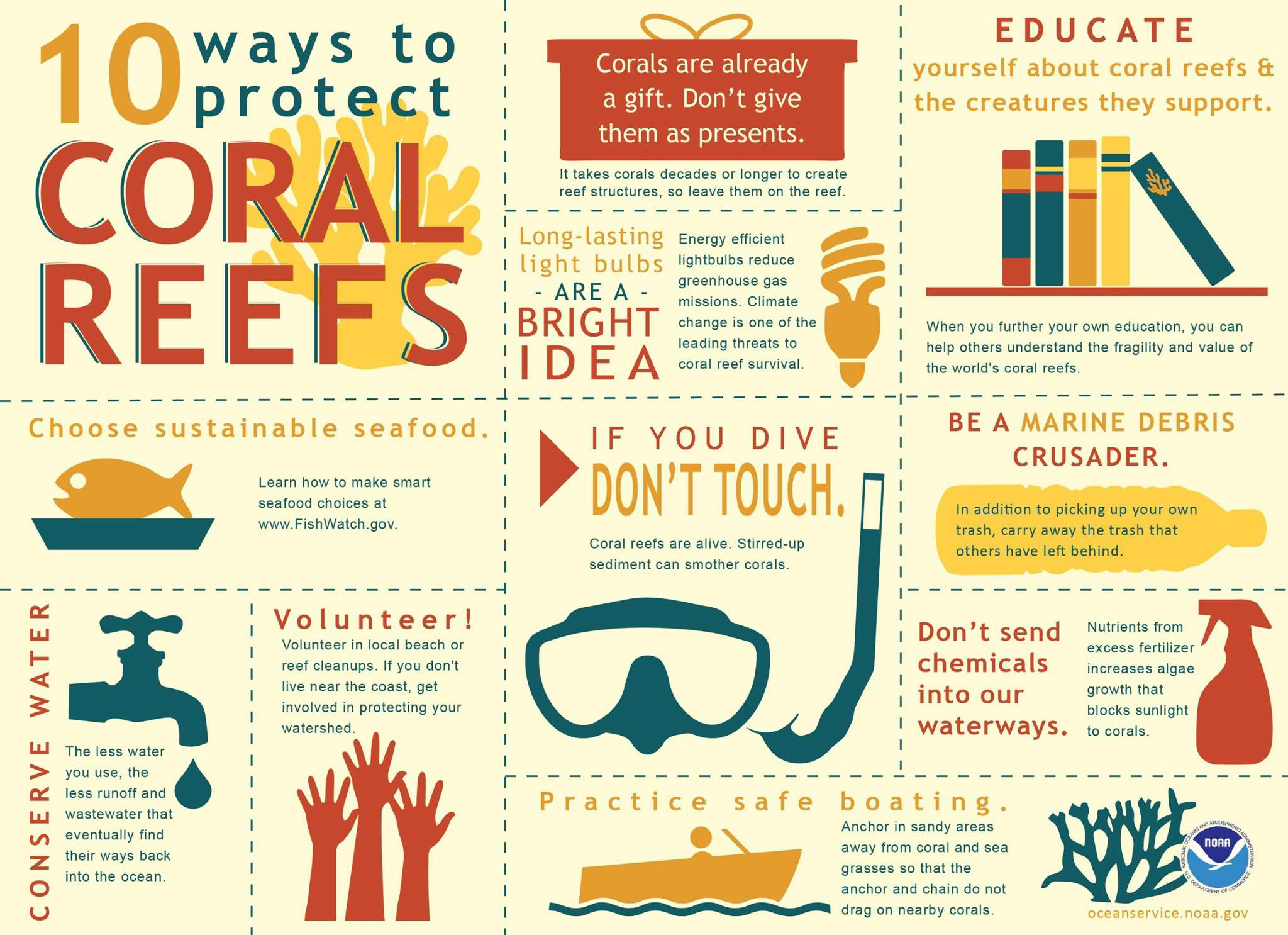 Protect our coral reefs