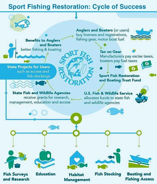 Sport Fishing Restoration: How anglers and state agencies work together...