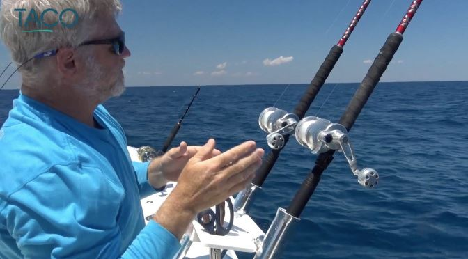 Learn to Kite Fish Like a Pro!