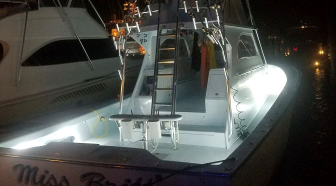 Enhance Boat, Improve On-The-Water Safety with TACO LED Lights