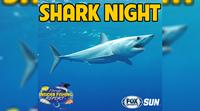 Catch Florida Insider Fishing Report Episode 21 – Shark Night