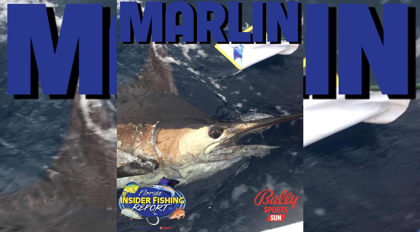 2021 Florida Insider Fishing Report Episode 16 – Marlin
