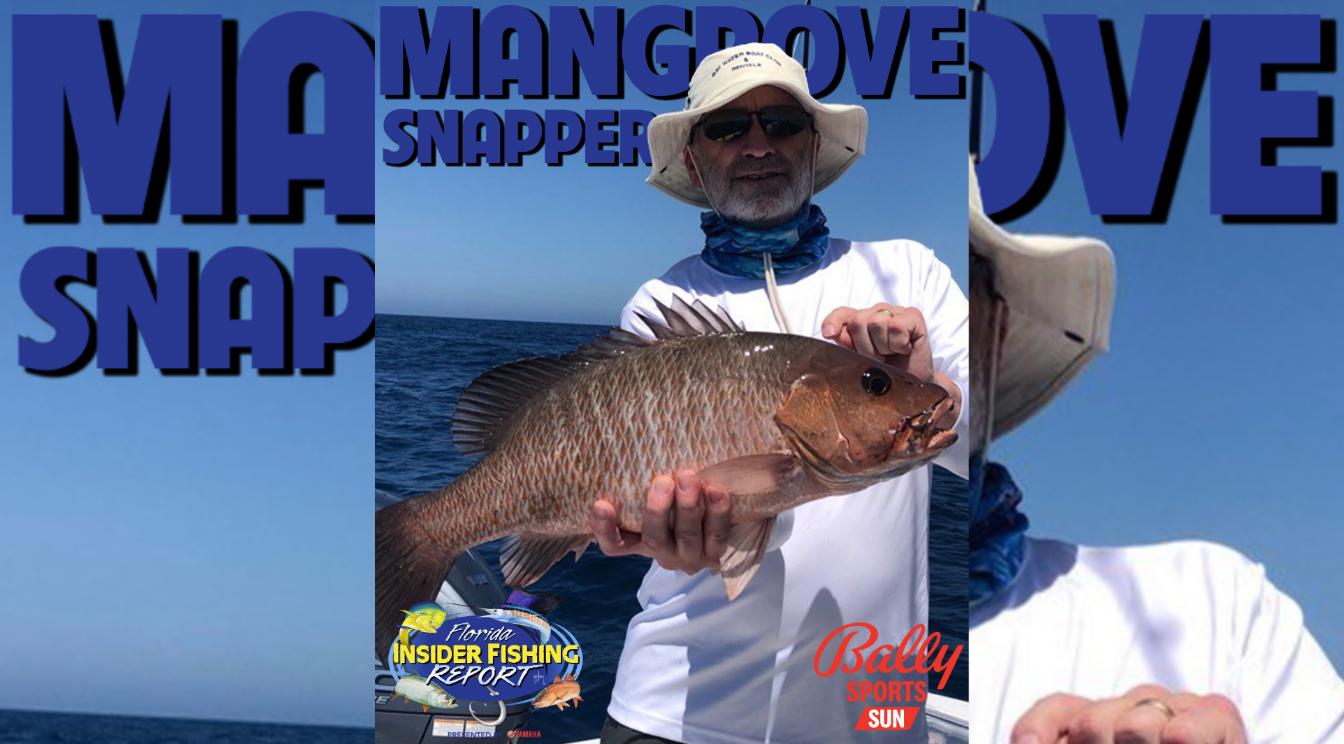 2021 Florida Insider Fishing Report Episode 17 – Mangrove Snapper