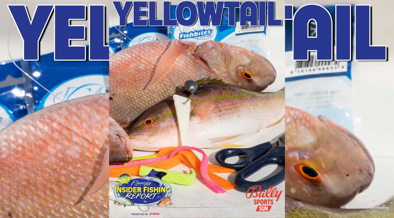 2021 Florida Insider Fishing Report Episode 23 – Yellowtail