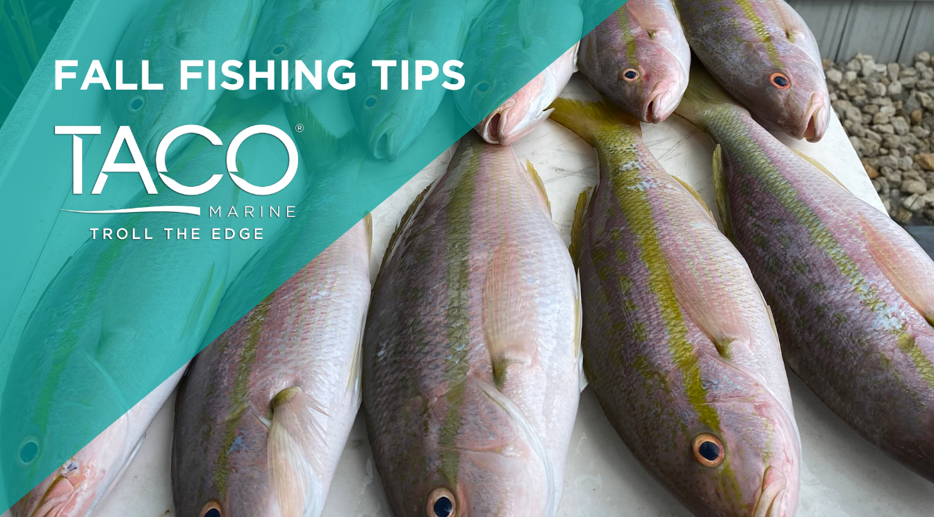 Fall Sport Fishing Tips from 2 Pros
